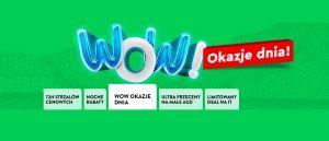 /ole-ole-promocja-wow-okazje-dnia-5-202104